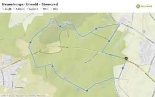 Neuenburger Urwald Steenpad